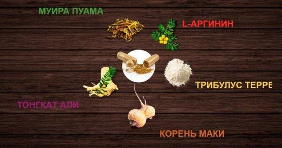 Состав Биоманикс