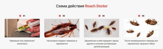 Роач Доктор