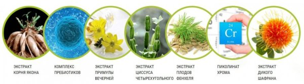Состав Слимбиотик