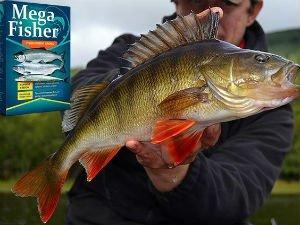Mega Fisher