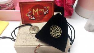 Денежный амулет Money amulet